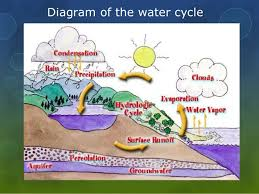 the water cycle ppthe water cycle by  amelia leveille    diagram