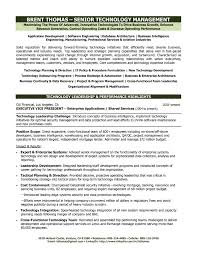 cio technology executive resume ceo resum cto resume examples cio executive summary resume cio executive summary resume