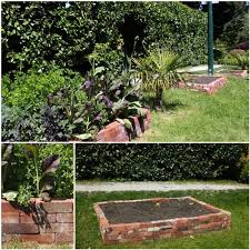 gardening edging ideas waplag recycled bedroommagnificent lush landscaping ideas