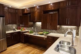 Universal Kitchen Appliances Universal Design Kitchen Inexpensive Mikegusscom