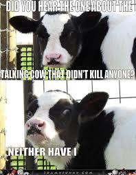 The-Mad-Cow-Fable.jpg via Relatably.com