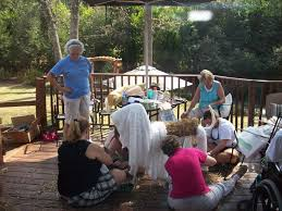 service dog training service dogs assistance dogs ptsd casper s wagging woofie wednesday volunteers