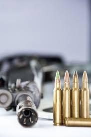 gun control essay pro gun control debate