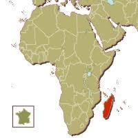 Madagascar, une île riche au naturel et… en « intellectuels pauvres » ! dans Actualité Madagascar