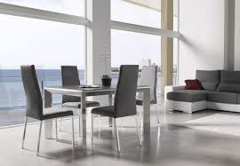 Acrylic Dining Room Chairs Kitchen Comely White Dining Room With Flax Fur Rug Also Modern