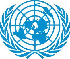an essay on the united nations organization uno