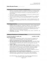 senior project manager sample resume professional summary senior project manager sample resume professional summary qualification and professional