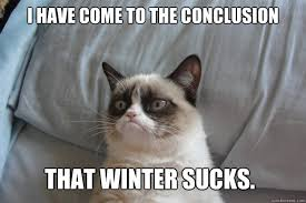 Hey, look, more snow on the way! Yay! Now go kill yourself. | The ... via Relatably.com