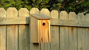 Basic BirdhouseTwo Birdhouse Designs