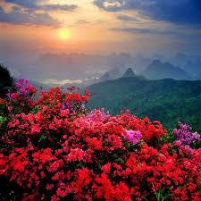 Resultado de imagen de bellos paisajes