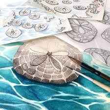 Work in progress. Echinarachnius parma (common sand dollar) for ...