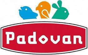 <b>Padovan</b>