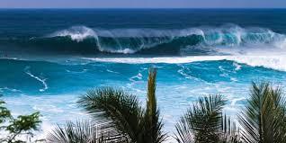 Discover <b>Hawaii</b>