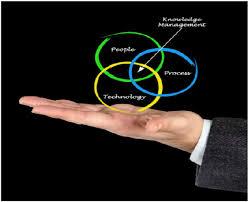 Australian Information  amp  Knowledge Management Benchmarking Survey        Results