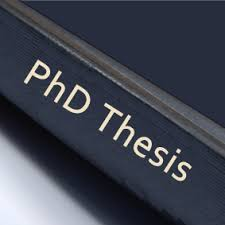 phd thesis on government e