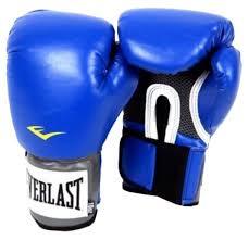 Боксерские <b>перчатки</b> Everlast <b>PU Pro style</b> anti-MB youth — купить ...