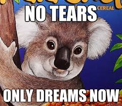 No tears only dreams now - koala crisp - quickmeme via Relatably.com