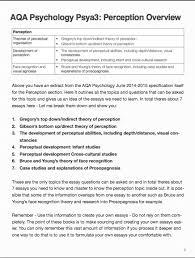 perception essay culture and self perception essay   bonbinomoverscom