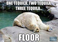 Polar bear memes on Pinterest | Polar Bears, Polar Bear Cubs and Meme via Relatably.com
