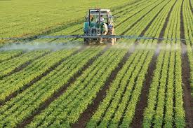 the organic center response to organic farming is not sustainable tolerance1