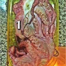 Resultado de imagem para imagens de receitas com polvo