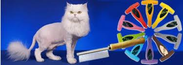 Купить расчёски, тримминг для кошек по низкой цене с доставкой ...