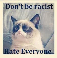 10 Grumpy Cat Memes That Will Crack You Up via Relatably.com