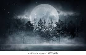 <b>Moon Forest</b> Images, Stock Photos & Vectors | Shutterstock