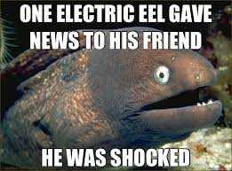 ONE ELECTRIC EEL GAVE NEWS TO HIS FRIEND HE WAS SHOCKED - Bad Joke ... via Relatably.com