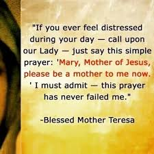 1000+ images about Mother Theresa on Pinterest | Pray for us ...