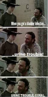 Walking Dead Memes on Pinterest | Liquor, Spaghetti and Pirates via Relatably.com