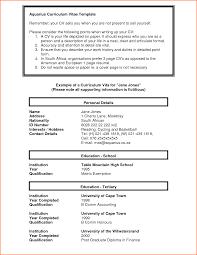 7 curriculum vitae sample job application budget template letter resume template advertising cv format for it job doc