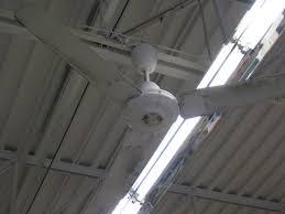 jeans ceiling fan sightings archive dt vintage fan forums canarm 56 ceiling fan