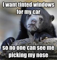 I want tinted windows for my car so no one can see me picking my ... via Relatably.com