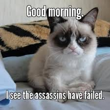 Grumpy Cat is disappointed. - Meme Something App. Get it for iOS ... via Relatably.com