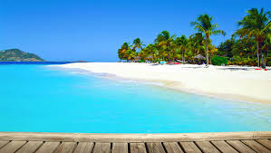 palm island the grenadines resort caribbean island vacation the grenadines