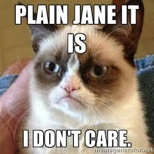 Plain Jane it is I don't care. - Grumpy Cat | Meme Generator via Relatably.com