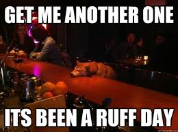 get me another one its been a ruff day - Rough Night Dog - quickmeme via Relatably.com