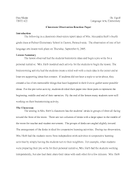 observation essay examples c writing observations documenting a child s development through c writing observations documenting a child s development through