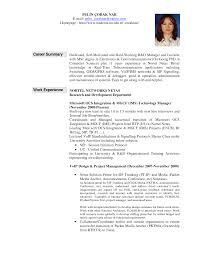 sample resume summary for it professionals experience resumes it professionals resumes summary template template example of resume job summary human resources kalamazoo mi