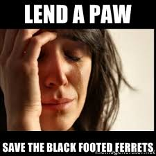 lend a paw save the black footed ferrets - First world Problems II ... via Relatably.com