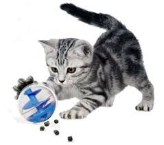 Image result for cat treat balls