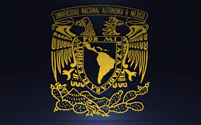 Directora, Laboratorio de Documentación y Análisis de la Corrupción y la Transparencia, UNAM
