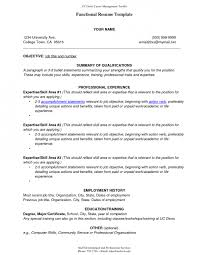 inspiration template combination style resume sample large size combination style resume sample