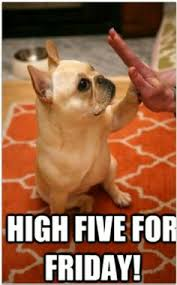 French Bulldogs on Pinterest   Merry Christmas French, French ... via Relatably.com