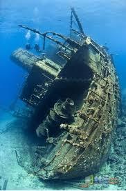 أكبر تجميع لأجمل صور من اعماق البحار (سبحان الله الخالق العظيم) Images?q=tbn:ANd9GcQZ0h-CR2sEYxmRuINErkoiz79hbaQbdveBiHEJPL1Emp2IkFexYw