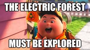The Electric Forest Must Be Explored - Misc - quickmeme via Relatably.com