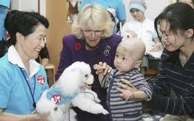 Κοντά στα παιδιά και τους σκύλους....