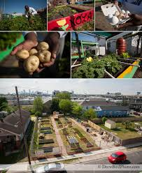 new orleans urban farming and food security a photo essay drew nola food deserts new orleans urban farming san francisco photographer environmental photojournalism