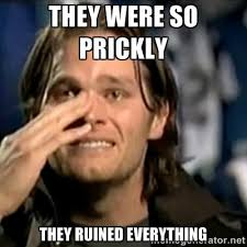 They were so Prickly They ruined everything - crying tom brady ... via Relatably.com